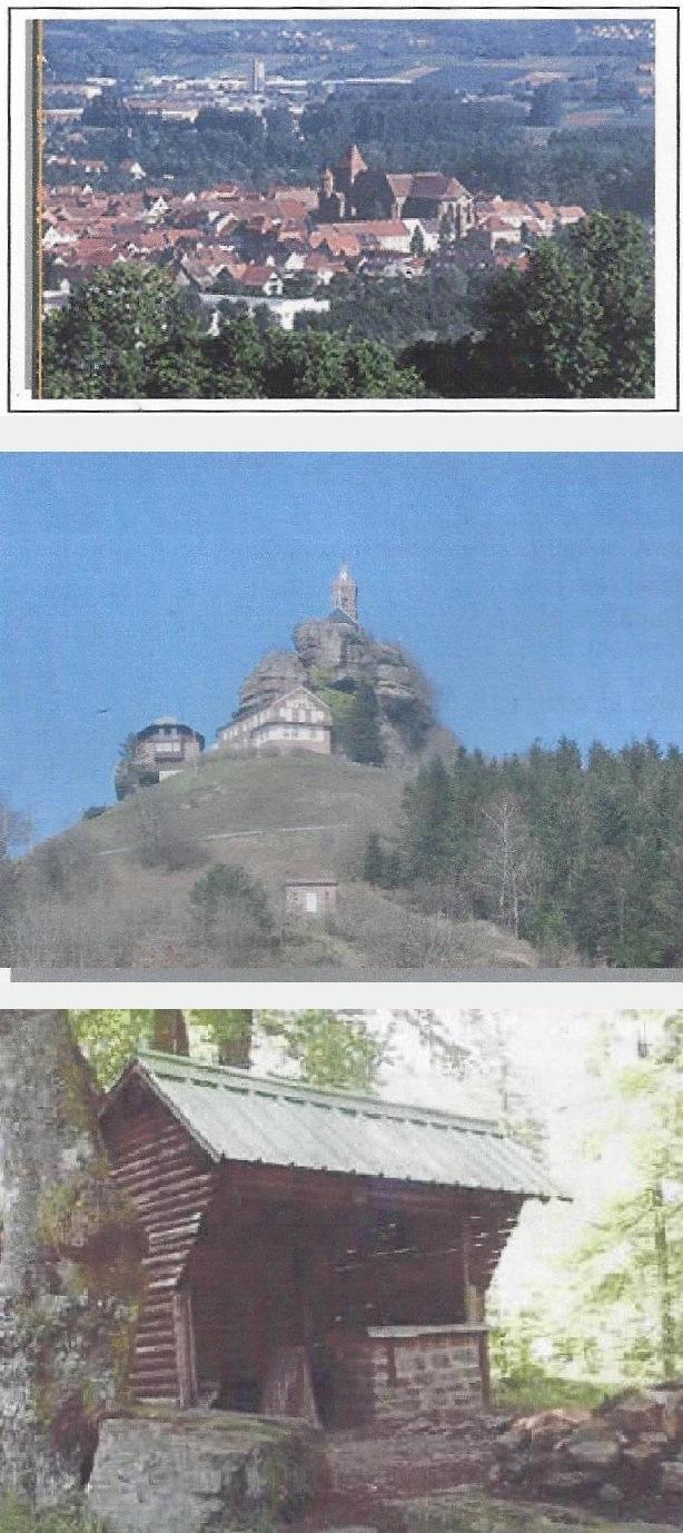 2004 05 p birkenwald