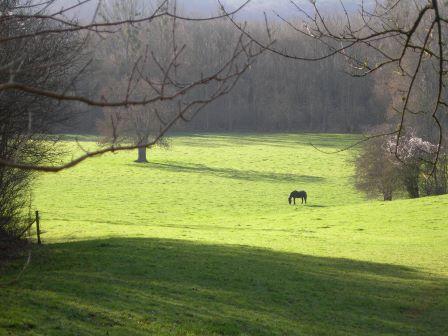 2007 01 cs rochefort